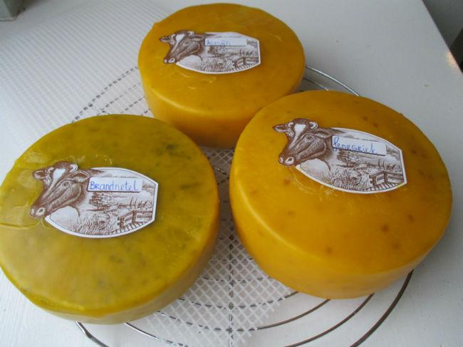 kaas maken van kefir
